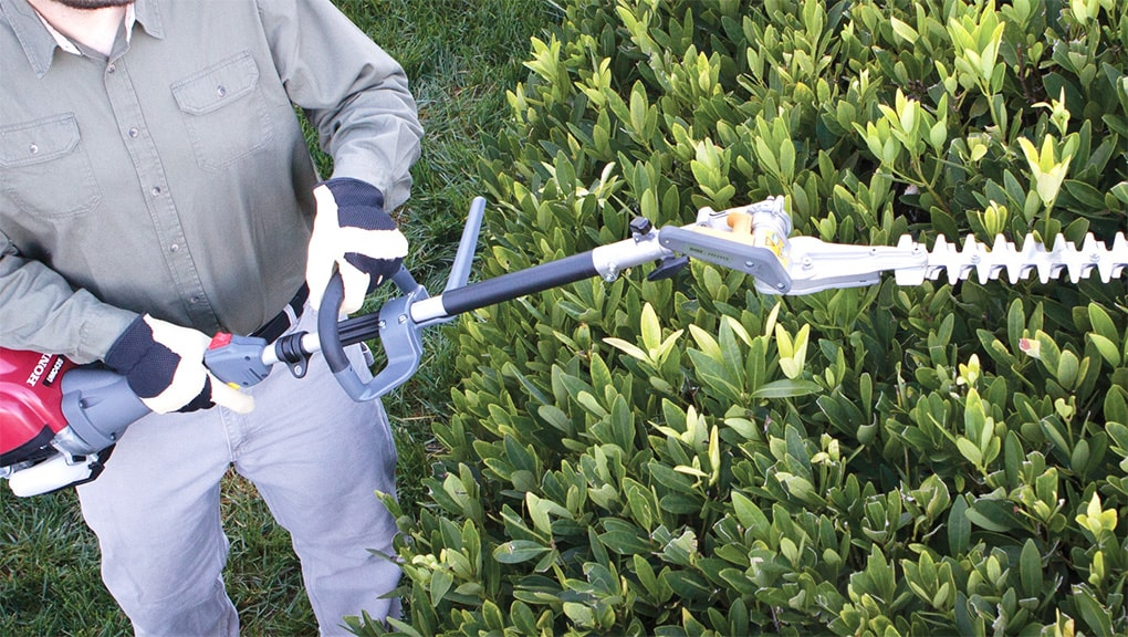 Image of a man using handheld on bush